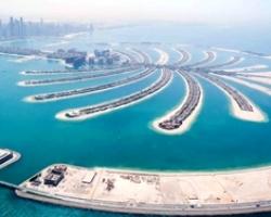 نخلة الجميرة دبي