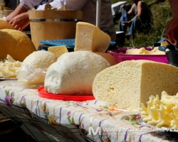 carpathian traditional cheese_brynza