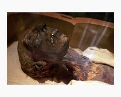 قاعة المومياوات بالمتحف المصرى
