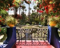 حديقة ماجوريل فى مدينة مراكش