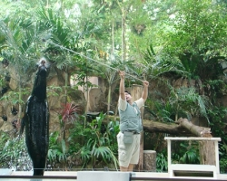 حديقة حيوان نيجارا فى ماليزيا