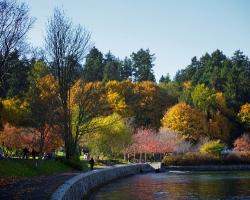 حديقة ستانلي فانكوفر كندا