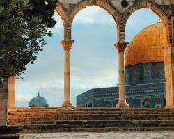 السفر من الجزائر الى فلسطين