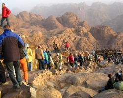 تنظيم رحلات سياحية في القاهرة الغردقة شرم دهب طابا مرسى علم والاسكندرية