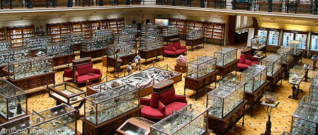 متحف جيومينيرو