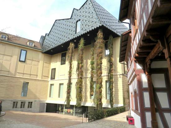 متحف الثقافات