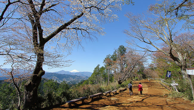 حديقة حيوان تاكاو-سان الطبيعية والحديقة النباتية