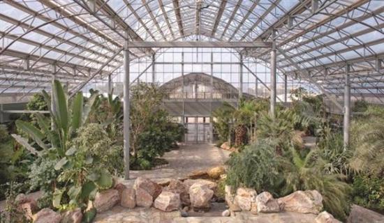 حديقة قصر بيان