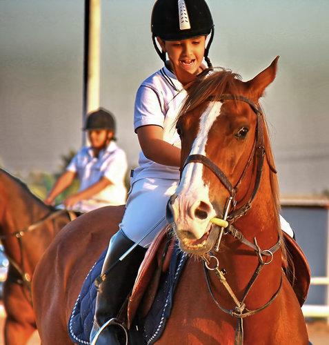 نادي الصافنات الرياض الرياض السعودية المسافرون العرب