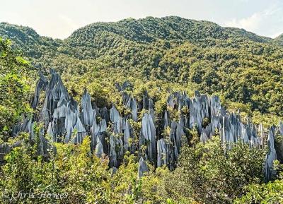 حديقة جونونج مولو الوطنية