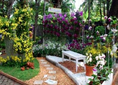 حديقة الأوركيد الإندونيسية في بينانغ