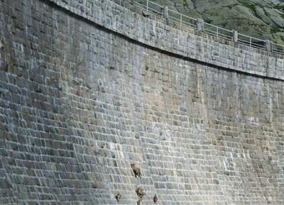 جدار جبال الالب