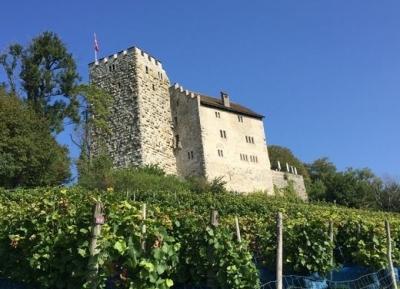 قلعة هابسبورغ