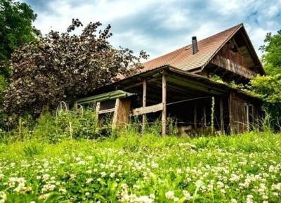 قرية سينرجى منزل الضيافه