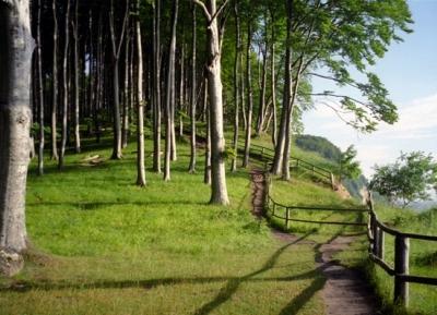 حديقة جاسموند الوطنيه