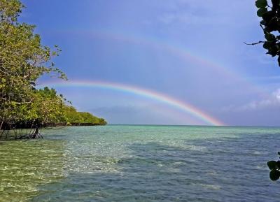 جزيرة ساماما