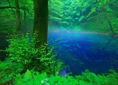 جونيكو (البحيرات الاثنا عشر)