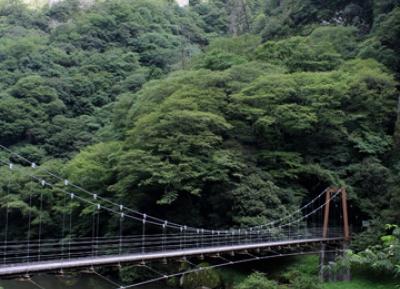وادي تاشيكو-كيو