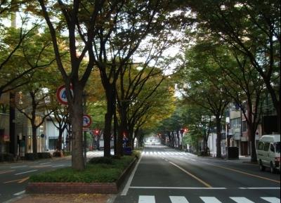 شارع أوبا-دوري