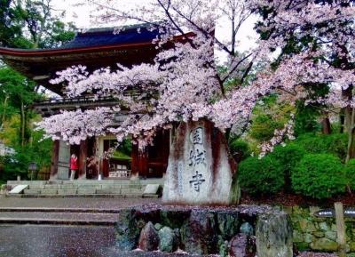 معبد مي-ديرا (معبد أونجو-جي)