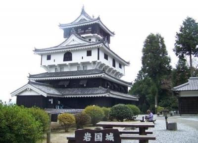 قلعة إيواكوني