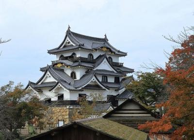 قلعة هيكون