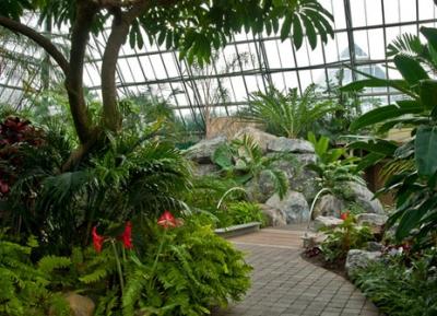 حديقة موتارت النباتيه