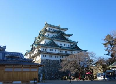 قلعة تاكادا