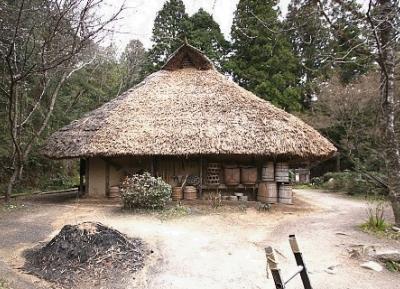 قرية النينجا كوكا