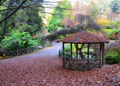 حدائق رودودندرون الوطنيه