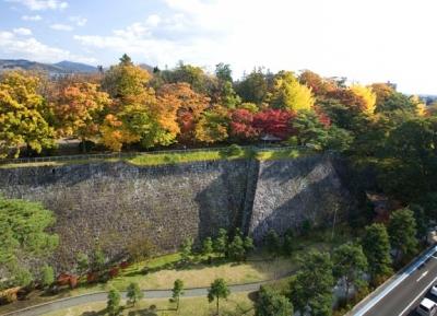 حديقة إيوات (حديقة قلعة موريوكا كاستل)
