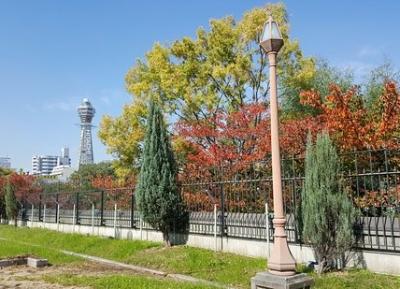 حديقة تنوجي