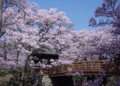 حديقة قلعة تاكاتو