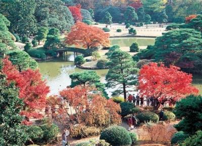 حديقة ريكوجين