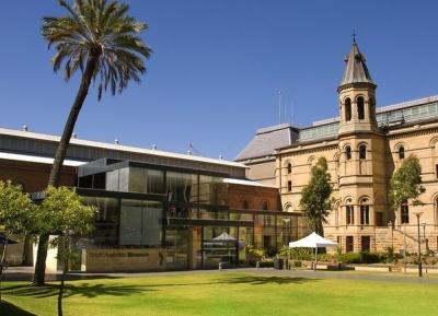 متحف جنوب أستراليا