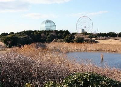 حديقة كاساي رينكاي-كوين