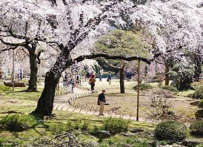 حديقة كويشيكاوا-كوراكوين