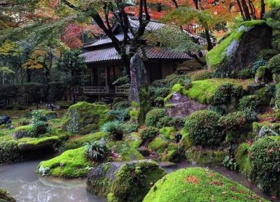 حديقة شيغا-إن-تين