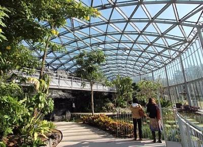 حديقة شينجوكو غيون