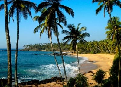 شاطئ غالي