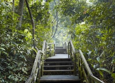 محمية بوكيت تيماه الطبيعية