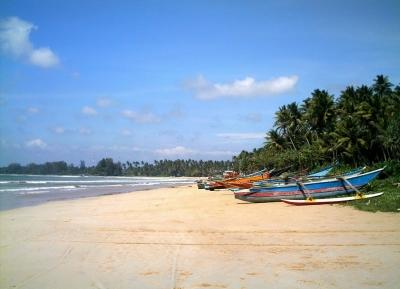 شاطئ ويليغاما
