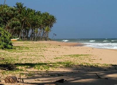 شاطئ رانا