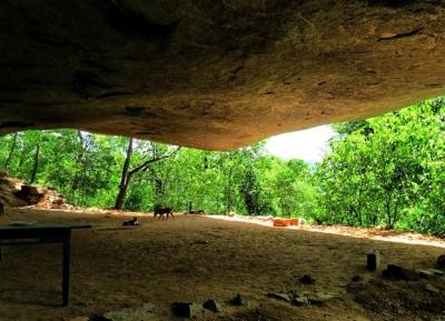 دير غابات سامانغالا