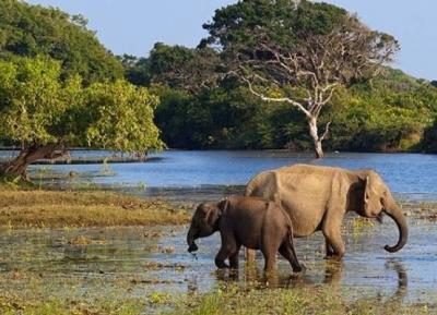 حديقة مادورو أويا الوطنية للحياة البرية
