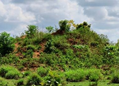 دير فيراغالا القديمة بولوكوناوا