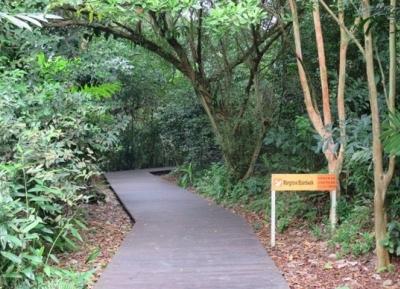 حديقة مانجروف نارا