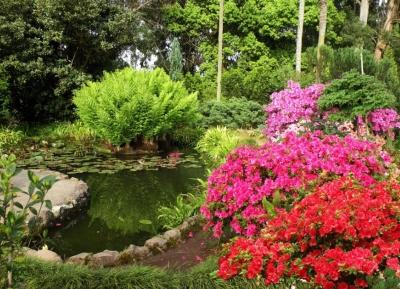 حدائق باطوم النباتيه