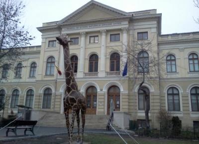 متحف جريجور أنتيبا للتاريخ الطبيعى