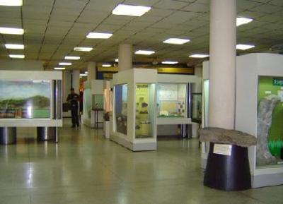 متحف الموارد الجيولوجية (متحف المعادن والصخور)